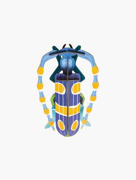 Décor mural Rosalia Beetle