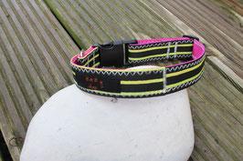 Hundehalsband, pink/gelb, schwarz
