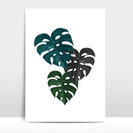 "A4 Artprint ""Monstera"""