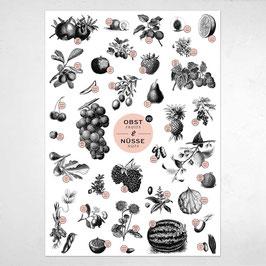 """A2 Poster """"Obst & Nüsse"""""""
