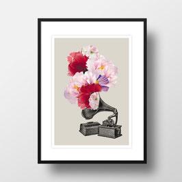 """A4 Artprint """"Blumophon"""""""
