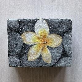 Blume z014