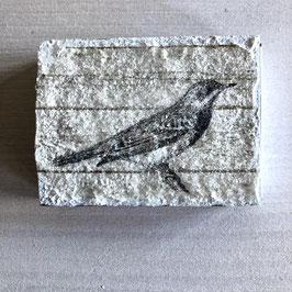 Vögeli z025