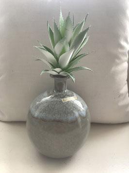 Formano Kaktus