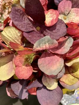 Formano Hortensie Deko-Idee Herbst in warmen Herbsttönen