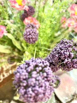 Wiesenblume/Distel gesamt 58cm