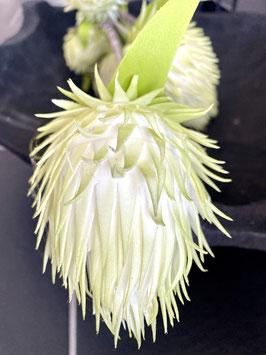 Formano Blüte Blütenzweig Deko zartes leuchtendes grün oder rose´