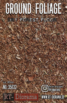 Ground Foliage: Dry forest floor