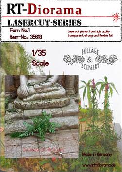 Foliage & Scenery: Fern No.1