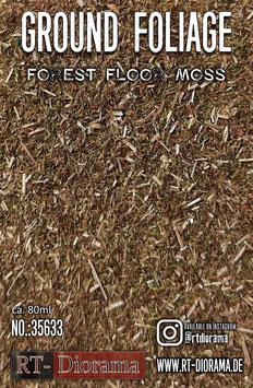 Ground Foliage: Forest floor moss