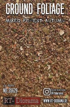 Ground Foliage: Mixed forest autumn