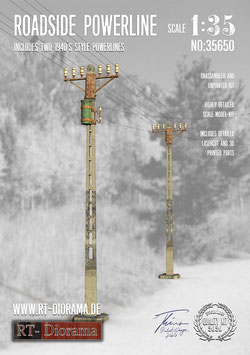 3D Resin Print: Roadside Powerline