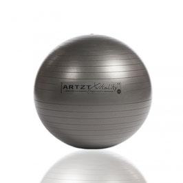 ARTZT vitality Fitness-Ball Professional 65cm