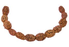 SELTENHEIT: Rudraksha Oliven klein - mittel - 20 cm-Strang