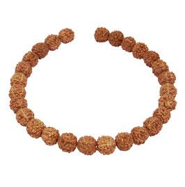 Rudraksha Kugeln 8 mm - ca. 27 Samen Perlen