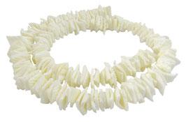 Archenmuschel quadratische Heishi Perlen 8-10mm -Strang