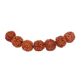 Rudraksha Kugeln 11 mm - 7 Samen Perlen
