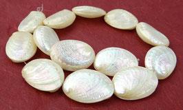 Weiße Abalone Perlmutt Perlen ganze Muschel-Schale ~30x20 mm - Strang - Rarität