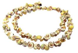 Kegelfechterschnecke kleine Spiral-Nuggets ca. 5-7 mm Muschelperlen