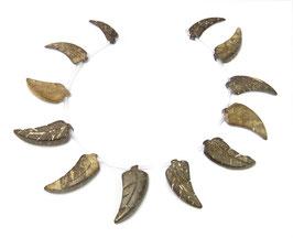 Kokosnuss gravierte Blätter ca. 22-28 mm