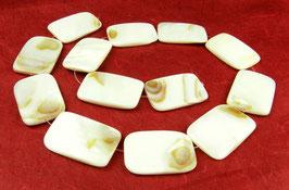 Süßwassermuscheln Perlen weiß-braune Rechtecke 20x30mm - Strang