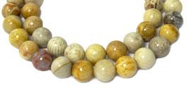 Koralle Fossilien Kugeln 8 mm – Strang