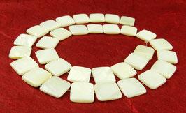 Süßwassermuscheln weiße Quadrate 12mm - Strang
