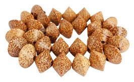 Kokospalmholz Rondelle ca. 20x14 mm - Strang