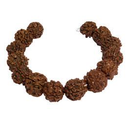 Rudraksha Kugeln 14-16 mm - 14 Samen Perlen