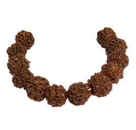 Rudraksha Kugeln 17 mm - 12 Samen Perlen