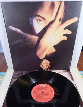 Terence Trent D´Arby - Terence Trent D´Arby´s Neither Fish Nor Flesh -Vinyl-LP-