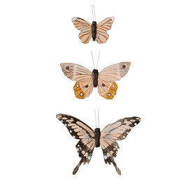 Schmetterlinge, Feather von Bungalow