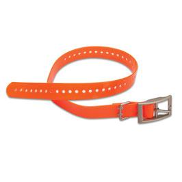 Hundehalsband orange (2,5cm)