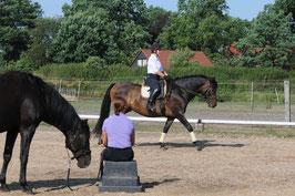 Fit aufs Pferd - Korrekt sitzen, besser reiten Teil 2 mit Simone Kasten und Nicole Künzel