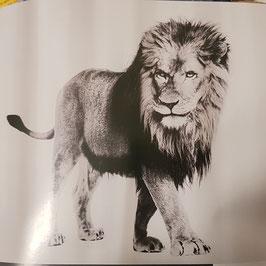 Duschvorhang Löwe und Zebra