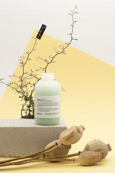 MELU/ Shampoo