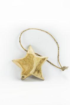 Drijfhouten ster