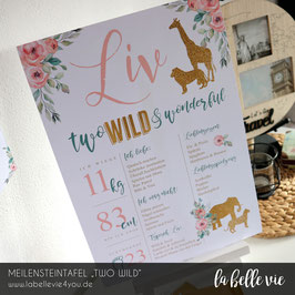 """Meilensteintafel """"Two Wild"""""""