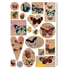 Collage  Blätter Schmetterlinge