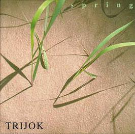 CD Achim Kirchmair Trio-Trijok Spring