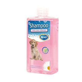 Shampoo hündchen 250ml