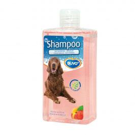 Shampoo entwirren