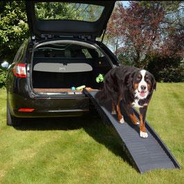 Rampe Auto plastik easy step bis 50kg Grau 43x40x26cm
