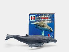 Was ist was Wale & Delfine / Geheimnis Tiefsee