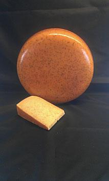 leidse cheese old ( komijn )