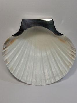 Concha baptismo vieira e prata 11 - 13497 JCC
