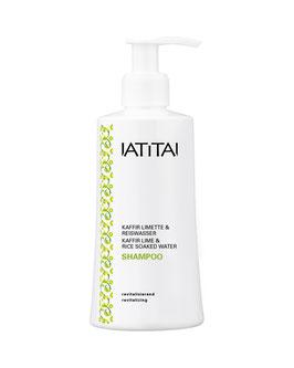 Shampoo KAFFIR LIMETTE & REISWASSER
