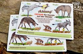 """""""Gefahr für Hunde auf der Weide!"""""""