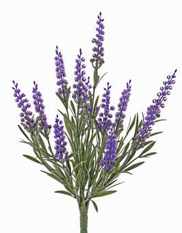 Lavendel UV-Schutz 35cm & 45 cm