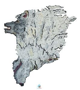 """Licence d'utilisation de l'image """"Groenland"""" SIDHERIA"""
